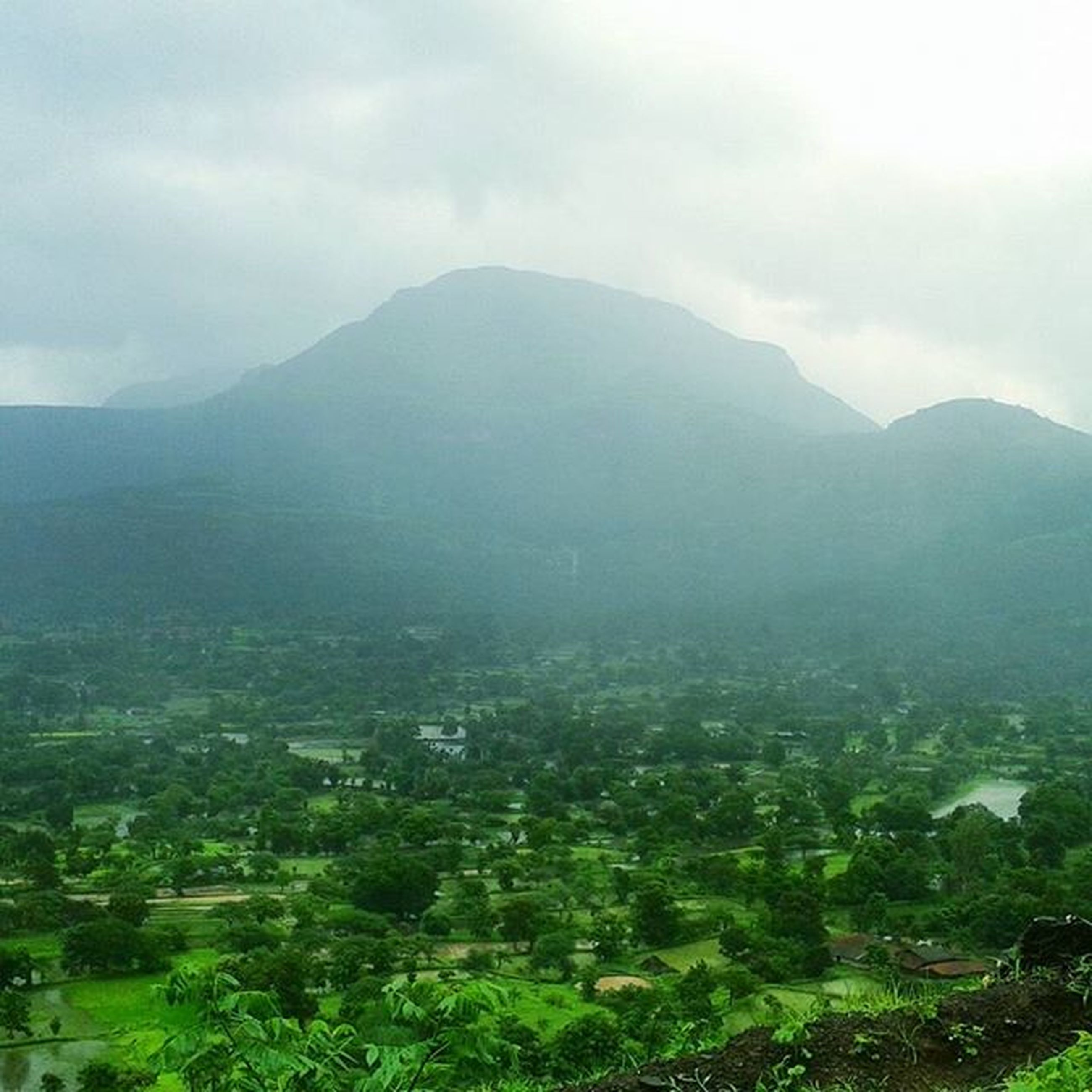 mountain, mountain range, tranquil scene, scenics, tranquility, landscape, beauty in nature, sky, tree, nature, green color, non-urban scene, valley, fog, idyllic, high angle view, lush foliage, hill, growth, day