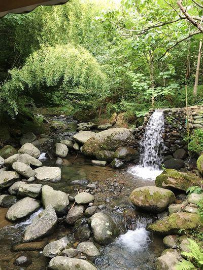 Приятное место у небольшого водопада в Грузинских горах Forest Water Beauty In Nature Stone Green Color First Eyeem Photo