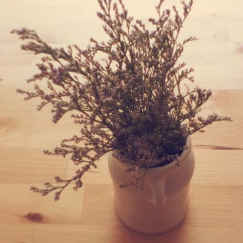 แจกัน 1 ใบตั้งอยู่บนโต๊ะ ดอกอะไร สวยดี ถ่ายทำเท่ห์ ขโมยดีมั้ย flowers white pot decorate ceramic wood
