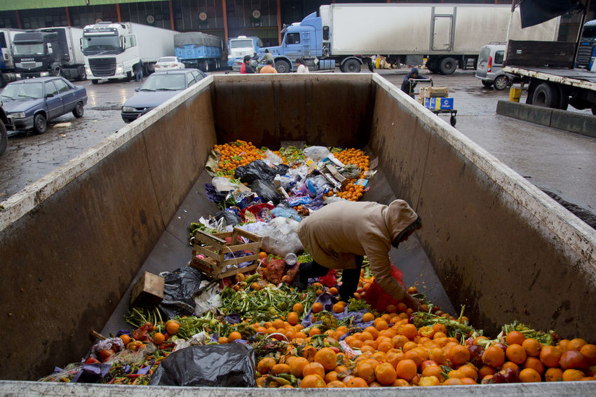 Thousands of tons of food are thrown away daily in the central market of Buenos Aires. Aliment Food Waste Awareness Food Waste Photojournalism Rubbish Trash Documentary Famulari Food Garbage Orange - Fruit Rotten Food Rotten Fruit Waste