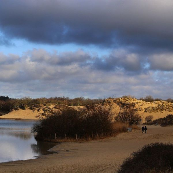 kennemerduinen Kennemerduinen Dutch Holland Instapicoftheday Photograph Photographer Netherlands Photooftheday Bestoftheday Nature Dunes Instagramers Instagram Instagood Instamood Instalike