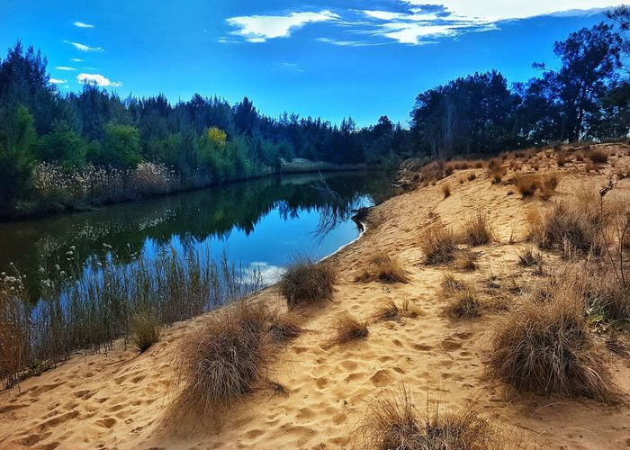 Reflection Nature Water Beach Outdoors Sky Sand Beauty In Nature No People Day Lake Scenics Tree UnderSea River Riverbank River View