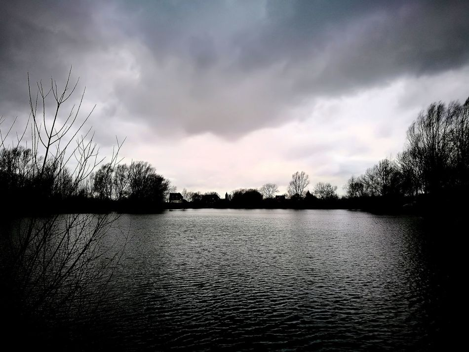 ein ganz graues tag Grey Grey Sky Greyscale Winter Tranquility Water Tree Scenics Beauty In Nature