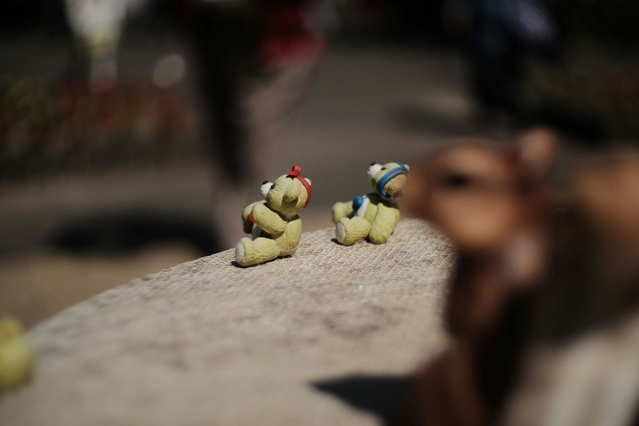 selective focus, figurine, no people, close-up, fruit, day, indoors, animal themes, food, nature