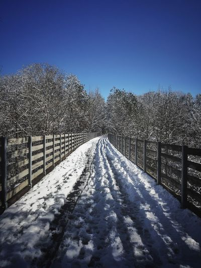 Around The Bend Cold Temperature Snow Winter Nature Tree Clear Sky No People Outdoors Bare Tree The Way Forward Tranquil Scene Beauty In Nature Tranquility Railing Scenics Blue Sunlight Day Shadow Sky