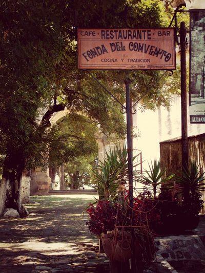 Tlaxcala Restaurant Beautiful Nature InTheRoad