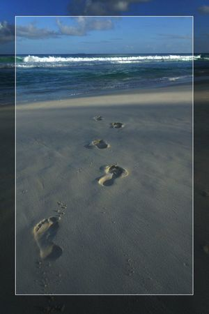 Trip ToSeychelles Seychelles Indianocean Footsteps
