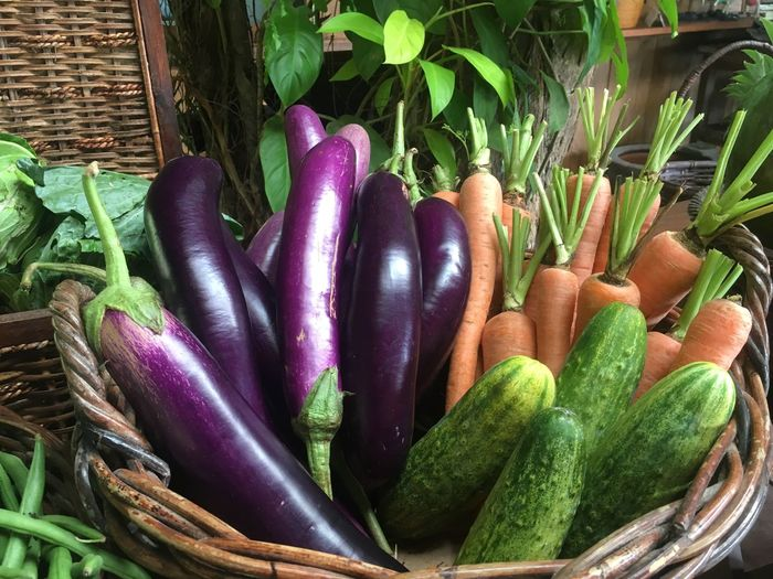 nyayur Vegetable Food And Drink Healthy Eating Freshness Green Color Food Raw Food Nature Terong Cucumber Carrot