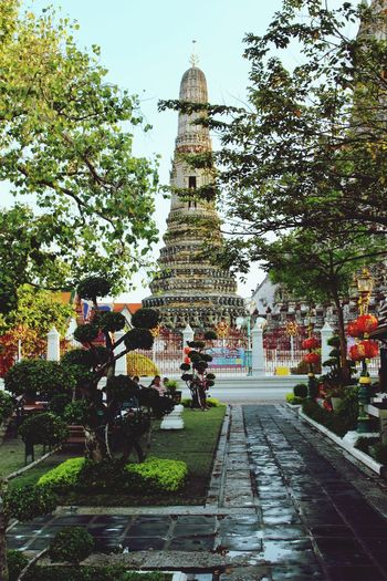 Bangkok is a very colorful place Tree Spirituality Large Group Of People Person Place Of Worship Travel Destinations Temple - Building Footpath Famous Place Steps Tourism Outdoors Day History Local Landmark