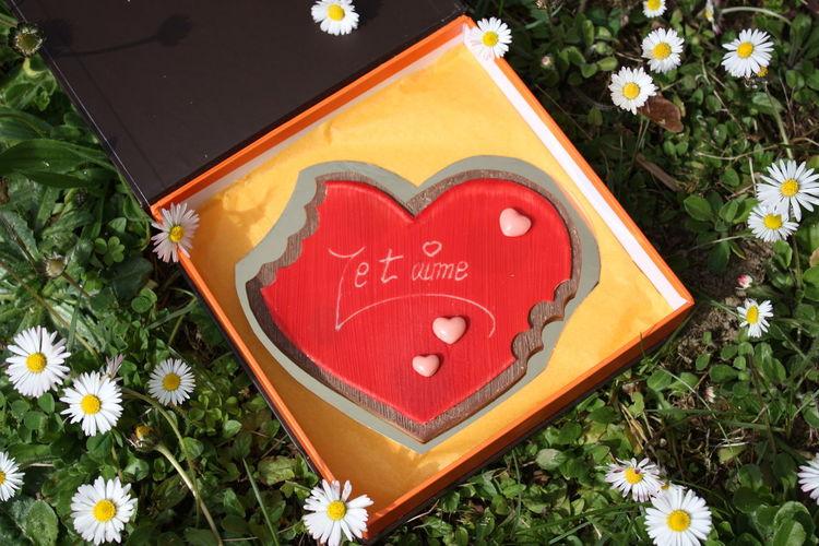 Love ♥ Love Lovely Amour Darling Love Chocolate Chocolate Heart Moment Love ❤ Douceur Chocolatée
