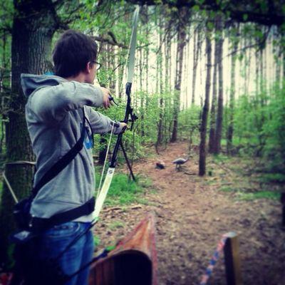 Bogenschießen Hoyt Sport Wald