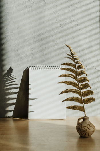 Close-up of leaves in vase on table