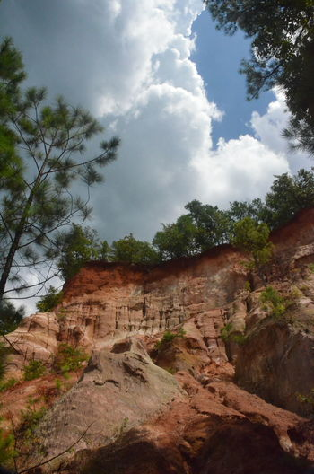Providence Canyon Providence Canyon State Park, Georgia, United States Beauty In Nature Cloud - Sky Day Eroded Geology Land Low Angle View Nature No People Non-urban Scene Outdoors Physical Geography Plant Rock Rock - Object Rock Formation Sandstone Scenics - Nature Sky Solid Travel Travel Destinations Tree