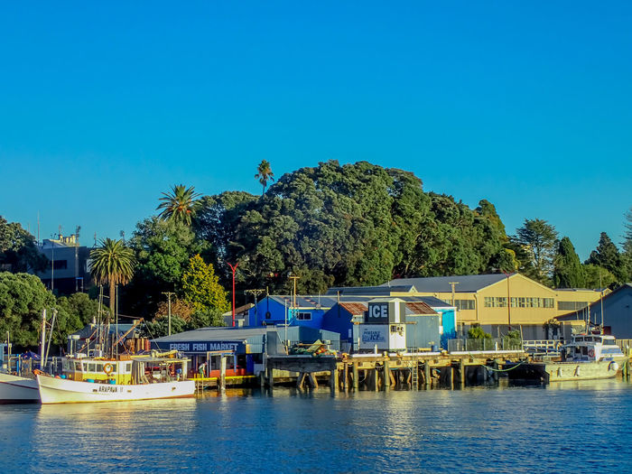 A day trip on the MV Bay Explorer Fishing Boats Architecture Blue Building Exterior Clear Sky Copy Space Fishing Mode Of Transportation Nature Nautical Vessel No People Outdoors Shoreline Sky Transportation Water Waterfront
