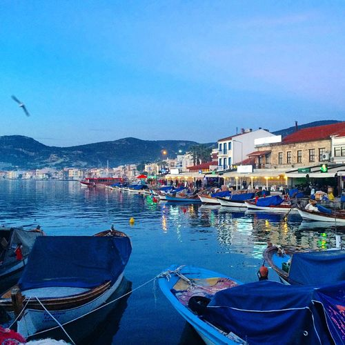 Izmir Eski Foça Turkey Nature Taking Photos Green Instagram Turkishfollowers Ottoman Isoo
