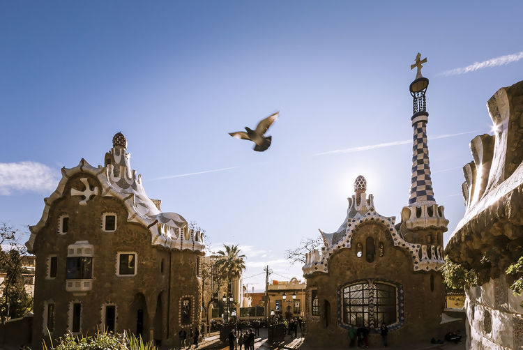 Walking around Antoni Gaudi's Parc Güell in Barcelona, Spain Architecture Barcelona Cityscape Doves Gaudi Postcard SPAIN Summertime Blue Sky City Views Day Daylight Flight Greeting Card  Handcrafted Landscape Modernism Natural Materials Organic Building Organic Shapes Ornaments Outdoors Parc Guell Sunny Day Urban