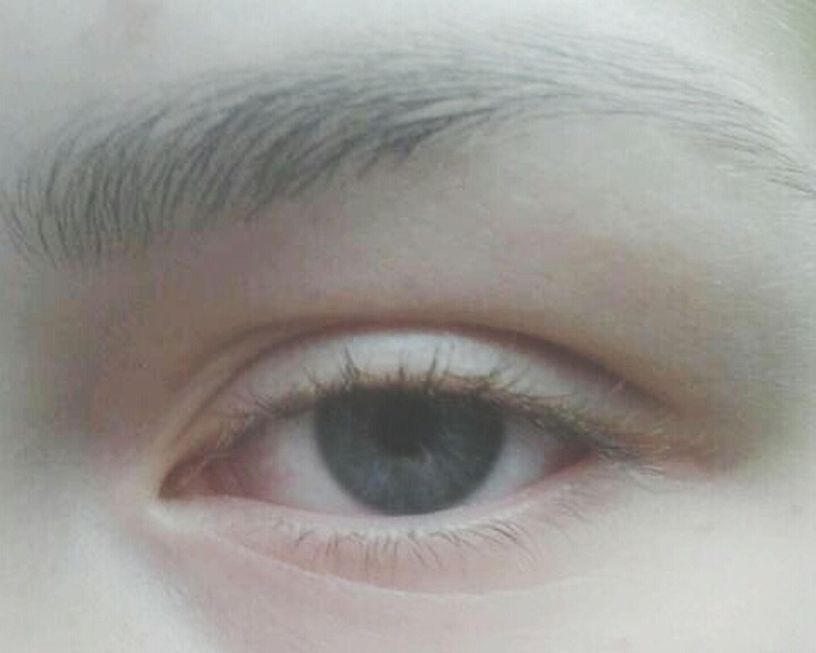 human eye, eyelash, close-up, eyesight, sensory perception, looking at camera, human skin, portrait, human face, extreme close-up, eyeball, lifestyles, part of, iris - eye, eyebrow, headshot, extreme close up