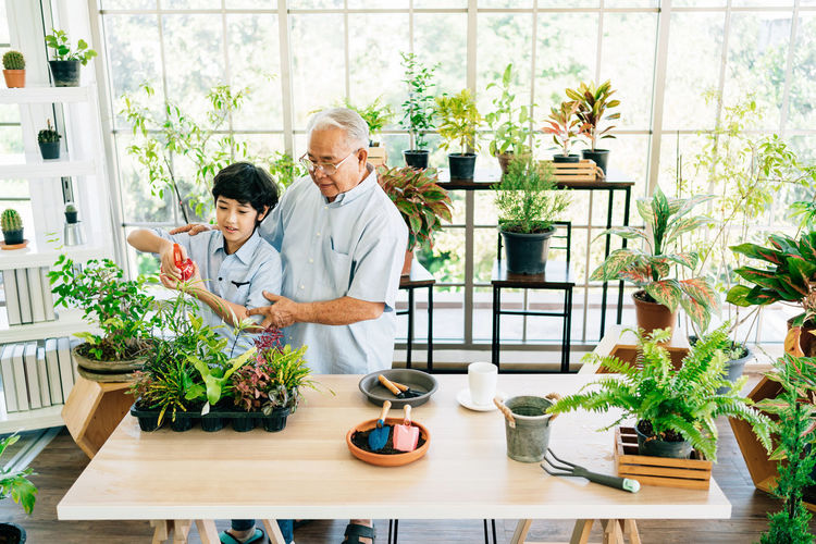 Man and woman standing by potted plants on table