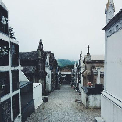 72/365 | A beautiful cemetery in SPAIN along the way. ElCaminoDeSantiago 365grateful