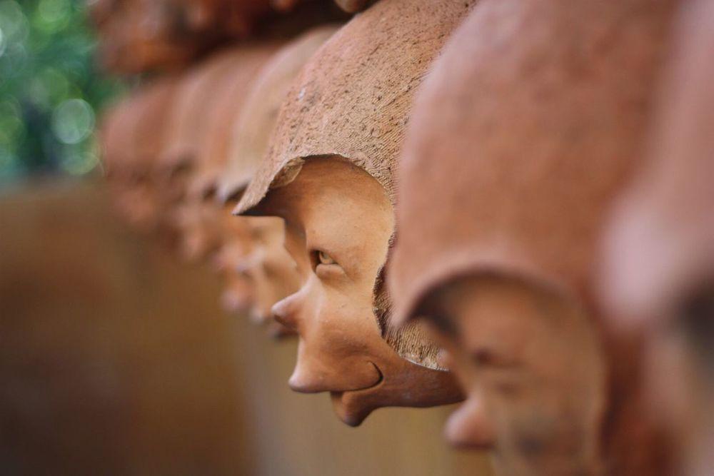 Monkeys Outdoors close up Close-up