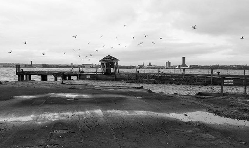 Moody, moody day. Igersmersey Rivermersey River Ticketoffice Derelict Birds Seabirds Bw Photography Bw_visions Amateurs_bnw Top_bnw_phot Rsa_bnw Bnw Bnw_ Bnw_zone Itsliverpool Visitliverpool Blackandwhite Mobilephotography Samsungnote4 Silhouette Bw_landscape Bw_beautiful_landscapes