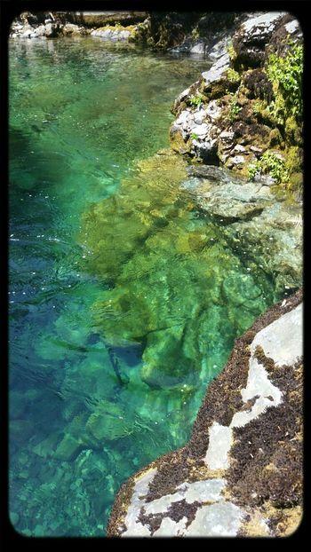 opal creek wilderness. no filters.