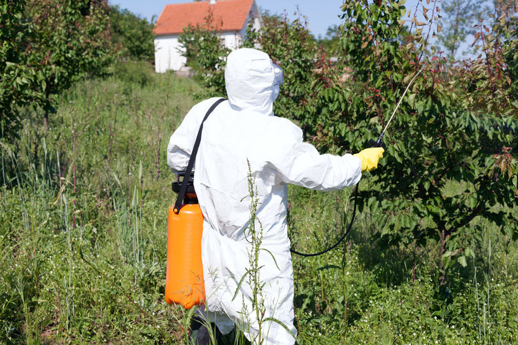 Agriculture Farm Farmer Insecticide Spraying Tree Working Chemical Environment Fertilizer Fruit Garden Health Herbicide Orchard Pest Management Pesticide Pollutant Pollution Protective Workwear Spray Sprayer Toxic Treatment
