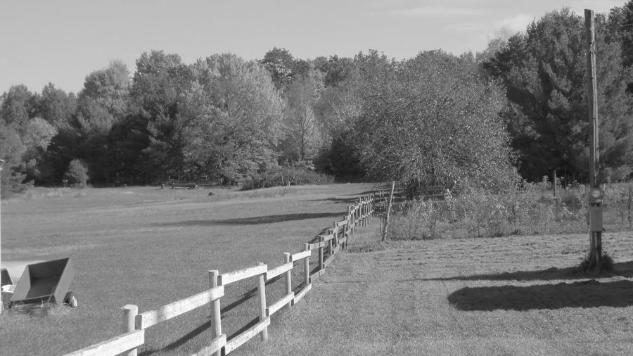 Taking Photos Black And White Photography Country Living Wooden Fence Lovely Place Serene Enjoying Life Cadillac Pure Michigan
