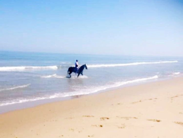 Sea Beach Real People Horizon Over Water Shore Nature Sand Water Leisure Activity Wave Men Scenics Sky Beauty In Nature Outdoors Extreme Sports Sport Skill  Day Motion