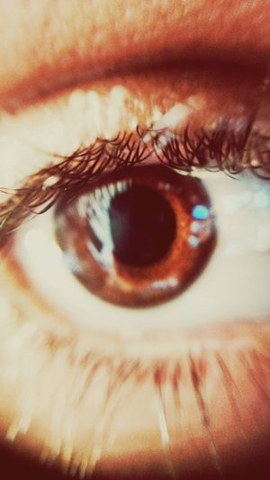 Meu zoio Eyes
