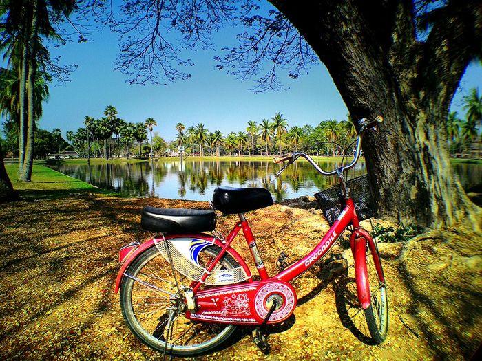 Bike parking in