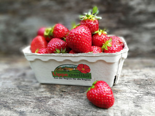 Best  Close-up Day Detmold Food Food And Drink Freshness Fruit Healthy Eating Indoors  Kampagne Landwirtschaft Lippe Lipperland Marketing No People Ostwestfalen-Lippe Ostwestfalenliebe Quality Red Rustic Strawberry Vermarktung Wood - Material