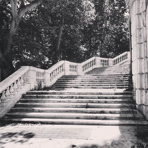 Rome Italy Discoveritaly Discovereurope Stairs Treppe Park Bellaitalia  Bellacitta Blackandwhite Travelphotography Travel Photographyislife Travelgram