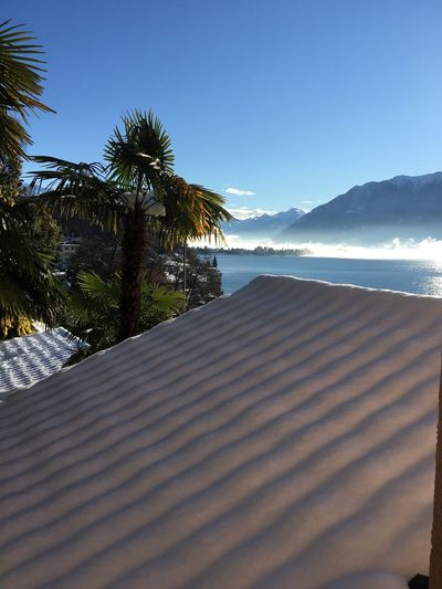 Schneedach Seesicht Tessin Im Winter Schnneedach Snow Roof Snow Water Scenics - Nature Tree Beauty In Nature Sky Sea Tropical Climate Palm Tree