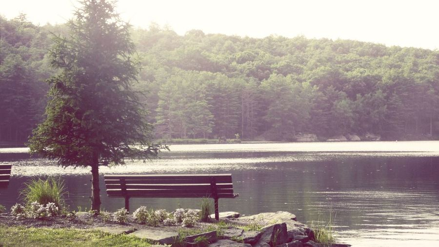 What Does Peace Look Like To You? Lakechampion Younglife Camp