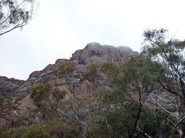 Freycinet NP, Coles Bay Beauty In Nature Day Freycinet National Park Landscape Mountain Nature No People Outdoors Scenics Sky Tasmania Tree Tree Area