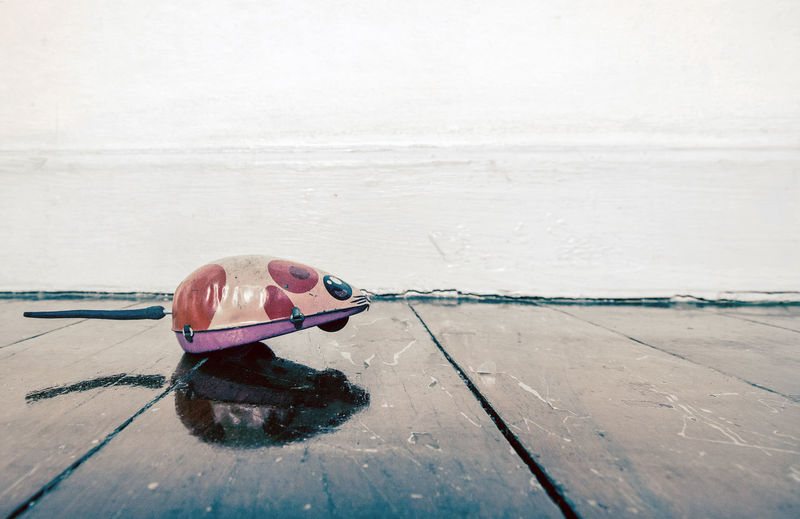 little tin mouse on wooden floor Copy Space Reflection Retro Running Living Room Mouse Shadows Tin Toy Toy Toy Mouse Toy Photography Wooden Floor