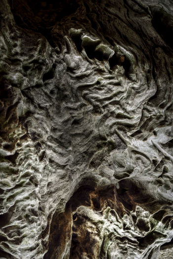 Dark Darkness Features Light Abstract Abstract Wood Backgrounds Bark Beauty In Nature Cave Close-up Day Full Frame Geology Light And Shadow Nature No People Outdoors Pattern Physical Geography Rock - Object Rock Formation Rough Shadows Textured  Tree Trunk Wooden