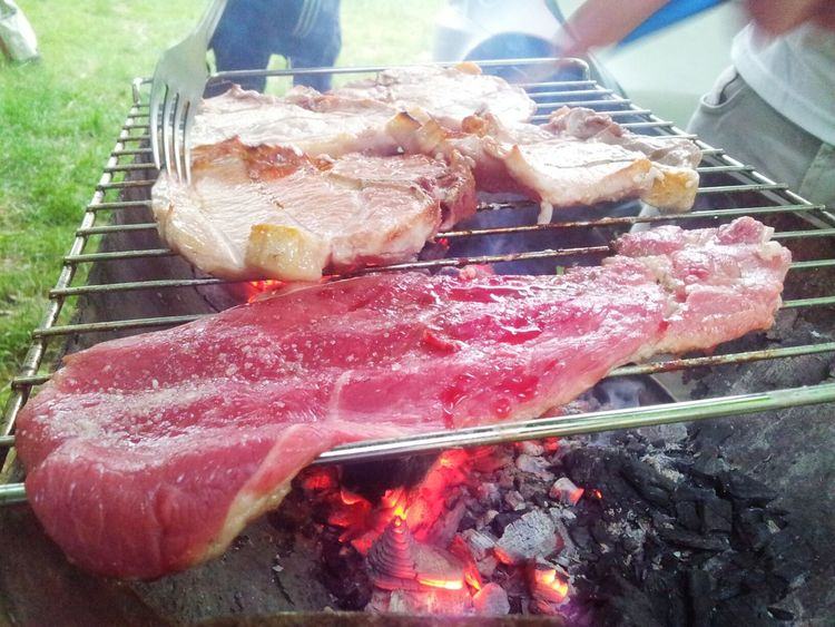 Mealtime Camping Picnic Beautiful Day Enjoying Life having a good time such a good mealtime Grilling Out Eating Steak