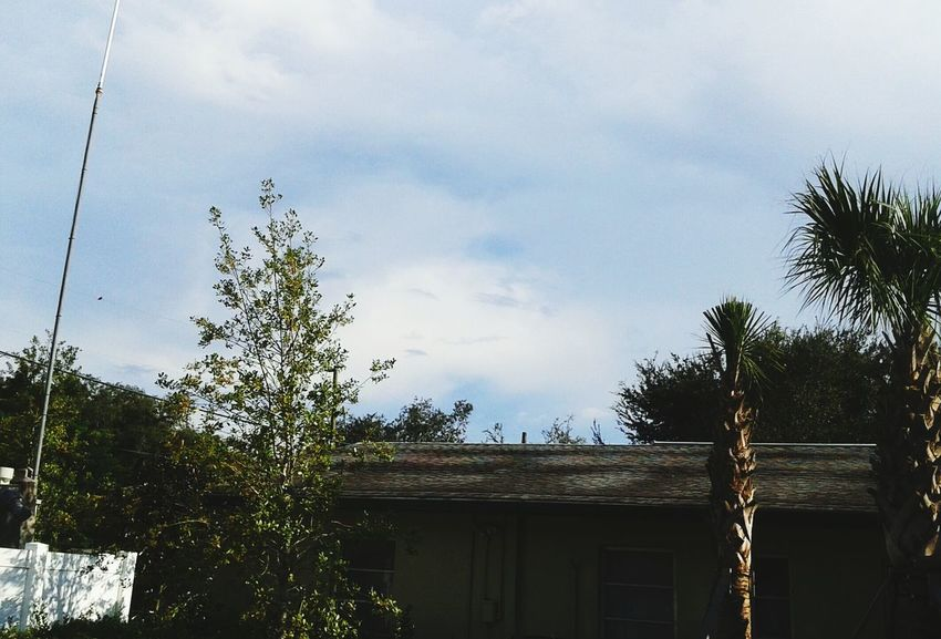 Florida Life Cheese! Cloud Is Smiling Taking Photos Where The Wild Things Are Florida Sun  Mothernature