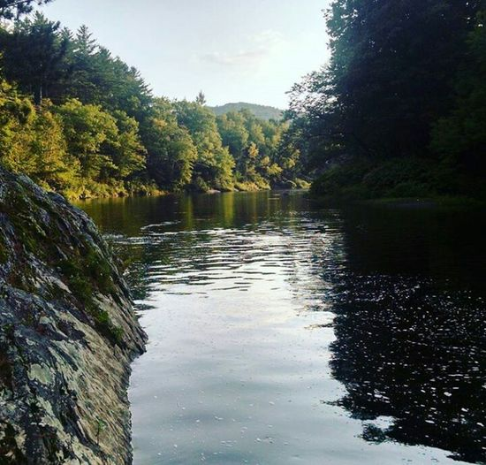 Maine River Ledges #fordays Nature