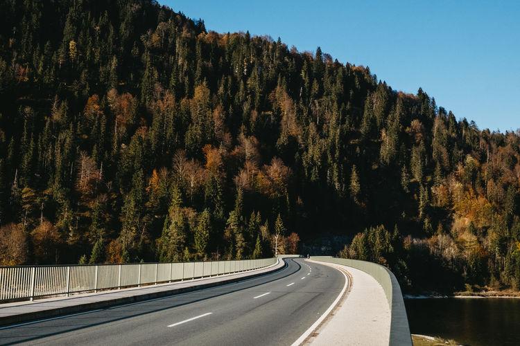 winding road in