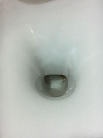 Flush Toilet Toilet Bathroom Domestic Bathroom Indoors  Domestic Room Home Hygiene Close-up