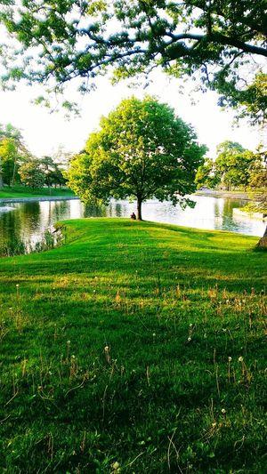 Deering Park