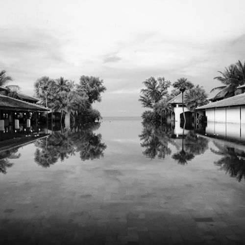 Surrounded by beauty AMPt_community Black And White Thailand Shootermag