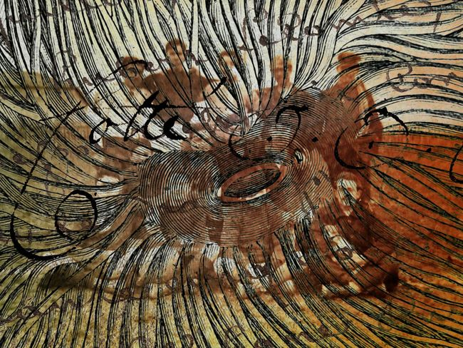 Backgrounds Full Frame Textured  Pattern Close-up No People Day Nature Tree Ring Outdoors Absurd Absurdism Unusual Bizzare Strange Weird Dreamscape Surrealism Surreal Abstract Art Creepy Oddities Curiosities Ink Abstract