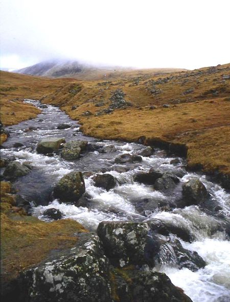 Moorland rushing stram Beauty In Nature Day Landscape Mist Moorland Wilderness Mountain Nature No People Outdoors River Rocks And Water Scenics Scotland Wild Landscape Sky Tranquility Water