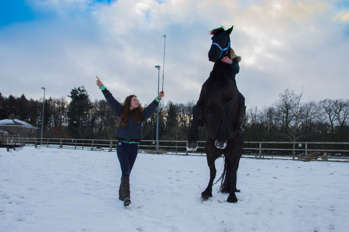 Black Bleu Sky Blond Hair Happy Horse Horse Photography  Horse Riding Outdoor Snow Snow ❄ Teen Teenage Girls Training