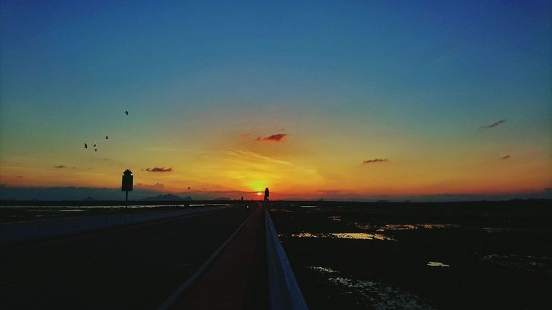 Sunset Road Bird Animal Themes Sea