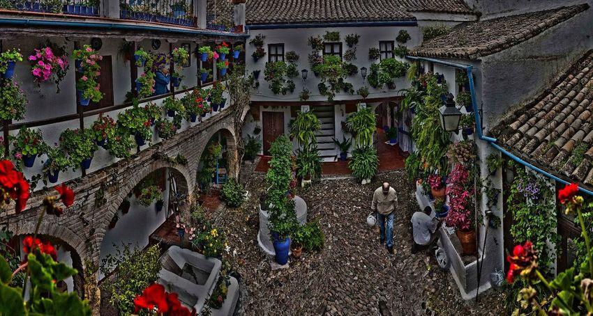 Hdrphotography Cordoba Spain Patios De Córdoba